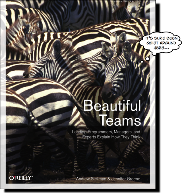 Beautiful Teams cover
