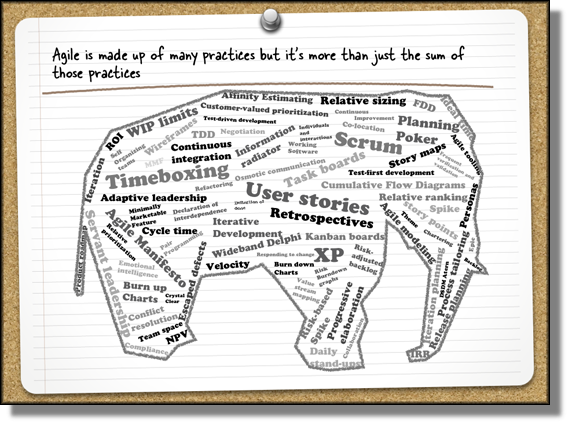 Elephant Body Parts Name http://www.stellman-greene.com/
